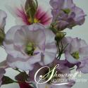 Моделиране на цветя