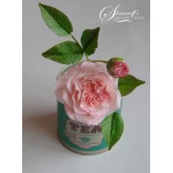 Курс направа на цветя от захарно тесто Градинска роза