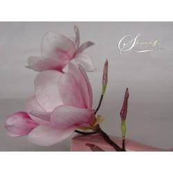 Курс моделиране на цветя с вафлена хартия - Магнолия