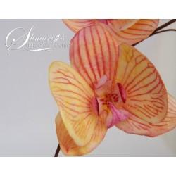 Курс моделиране на цветя с вафлена хартия - Орхидея Moth