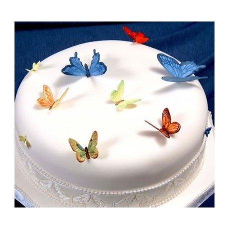 Комплект - пеперуди, пчели и божа кравица