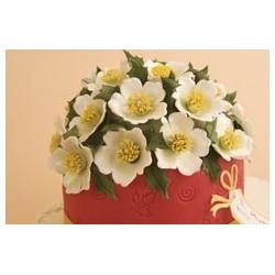 Коледни рози - големи