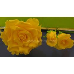 Център за роза - М